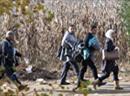 Der Europarat und das UNHCR sind besorgt um die Gleichsetzung von Flüchtlingen mit Terroristen.